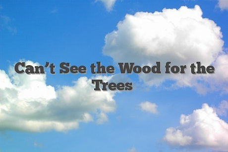 Cant-See-the-Wood-for-the-Trees-1.jpg