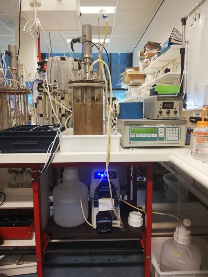 Nieuwe ontwikkelingen op het gebied van bioplastic PHA
