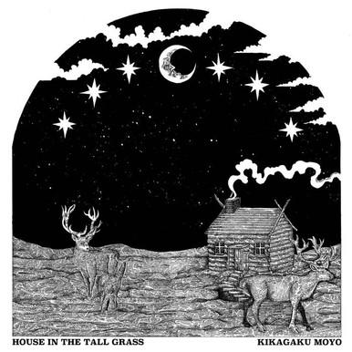 探 尋 夜 色 森 林 - 對 談 幾 何 學 模 樣