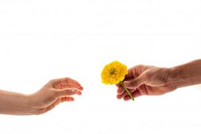 3 Benefícios da Gratidão