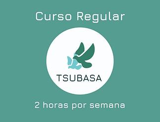 Curso Regular (1).png