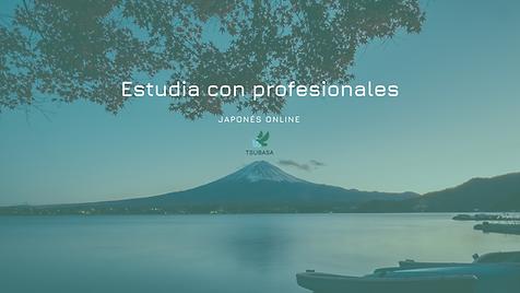 Estudia con profesionales (2).png