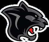 Ottawa Panthers