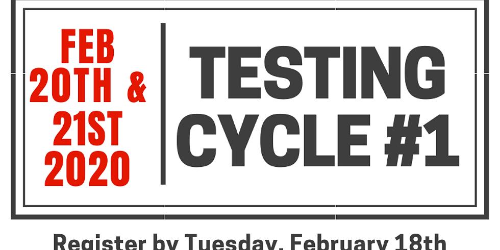 Testing Cycle #1.20
