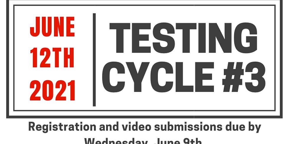Testing Cycle #3.21