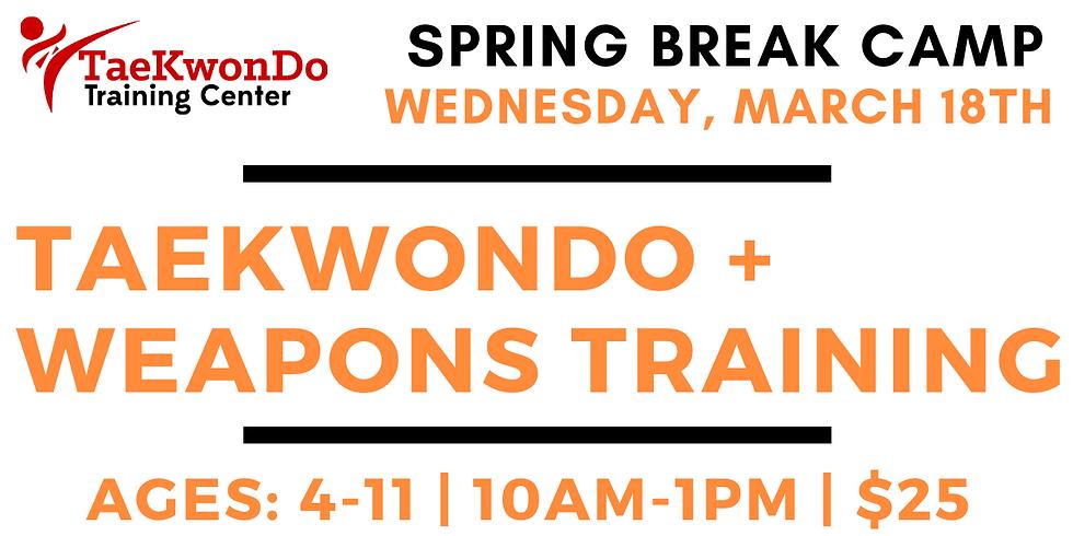 Spring Break Camp - WEDNESDAY