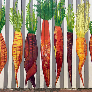 XXIV Carrot