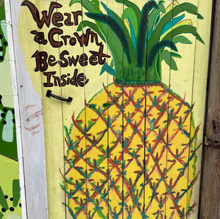 Pineapple at the Watermelon House
