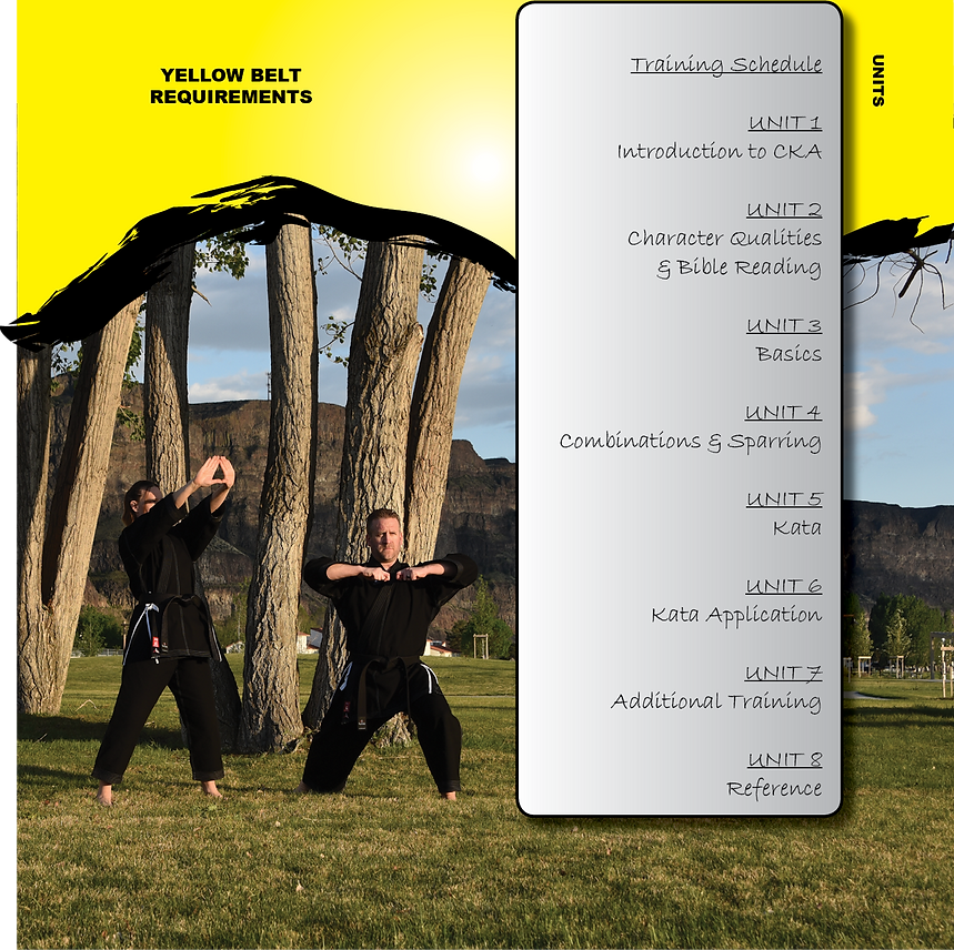Yellow Belt Book pg. 3.png