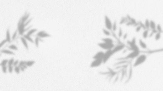 cye-foglie.jpg