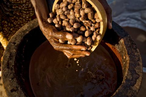 Le karité, l'or vert des femmes au BurkinaFaso