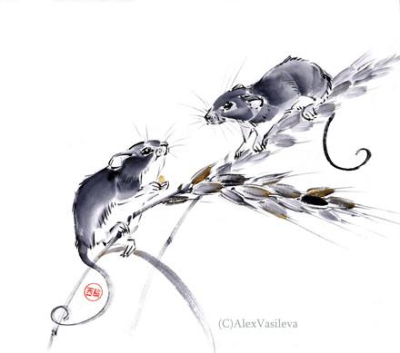 мышь-малютка.jpg