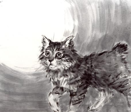Кот с луной. Цукико – лунный ребенок