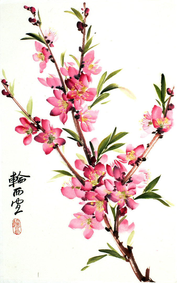Цветы персика 20*30