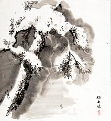 Сосна под снегом