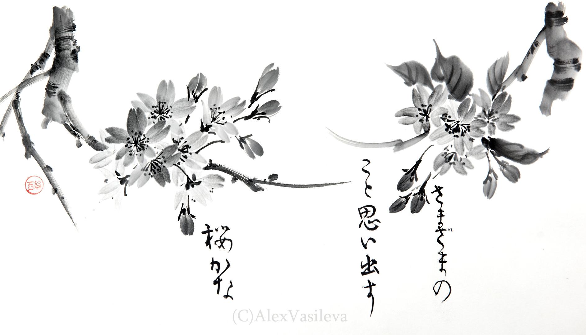 Сакура 40*30