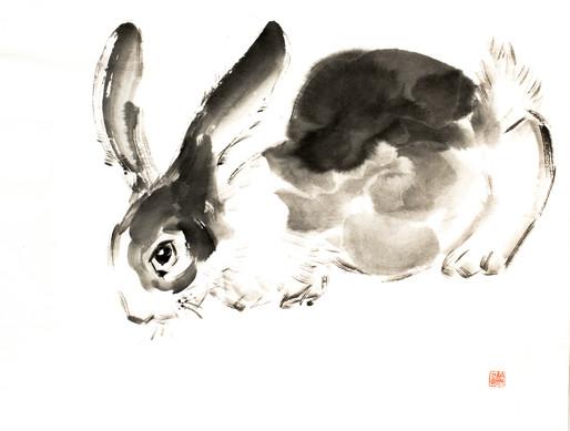 Кролик.jpg1.jpg