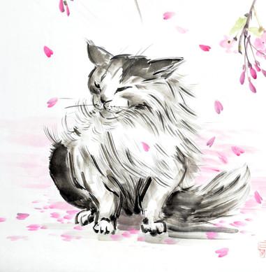 фрагмет работы кот под сакурой.jpg