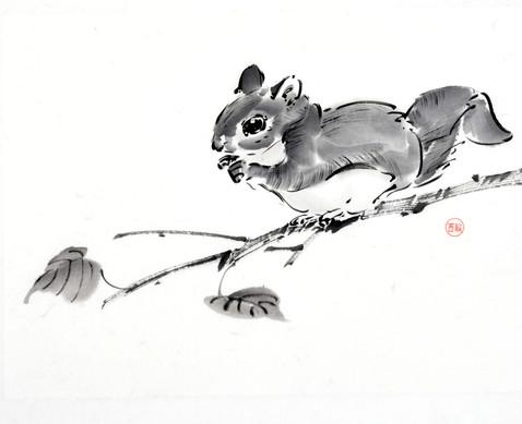 Японская белка летяга на ветке 33*24