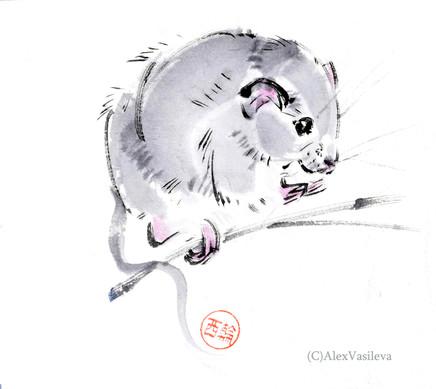 мышка 2.jpg