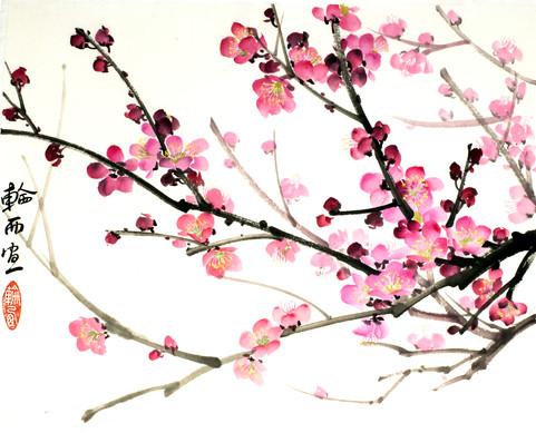Слива в цвету 30*40