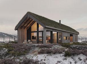 Snohetta hytte.jpg