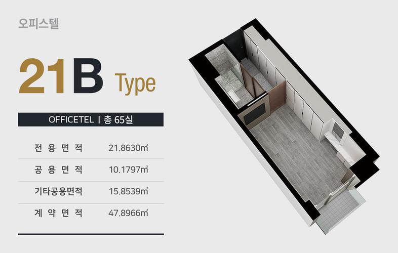 21B_type.jpg