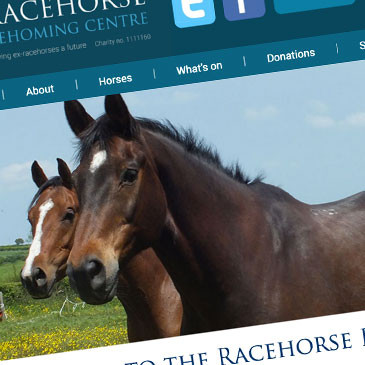 RACEHORSE REHOMING