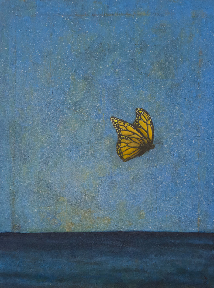 Butterfly Over the Atlantic