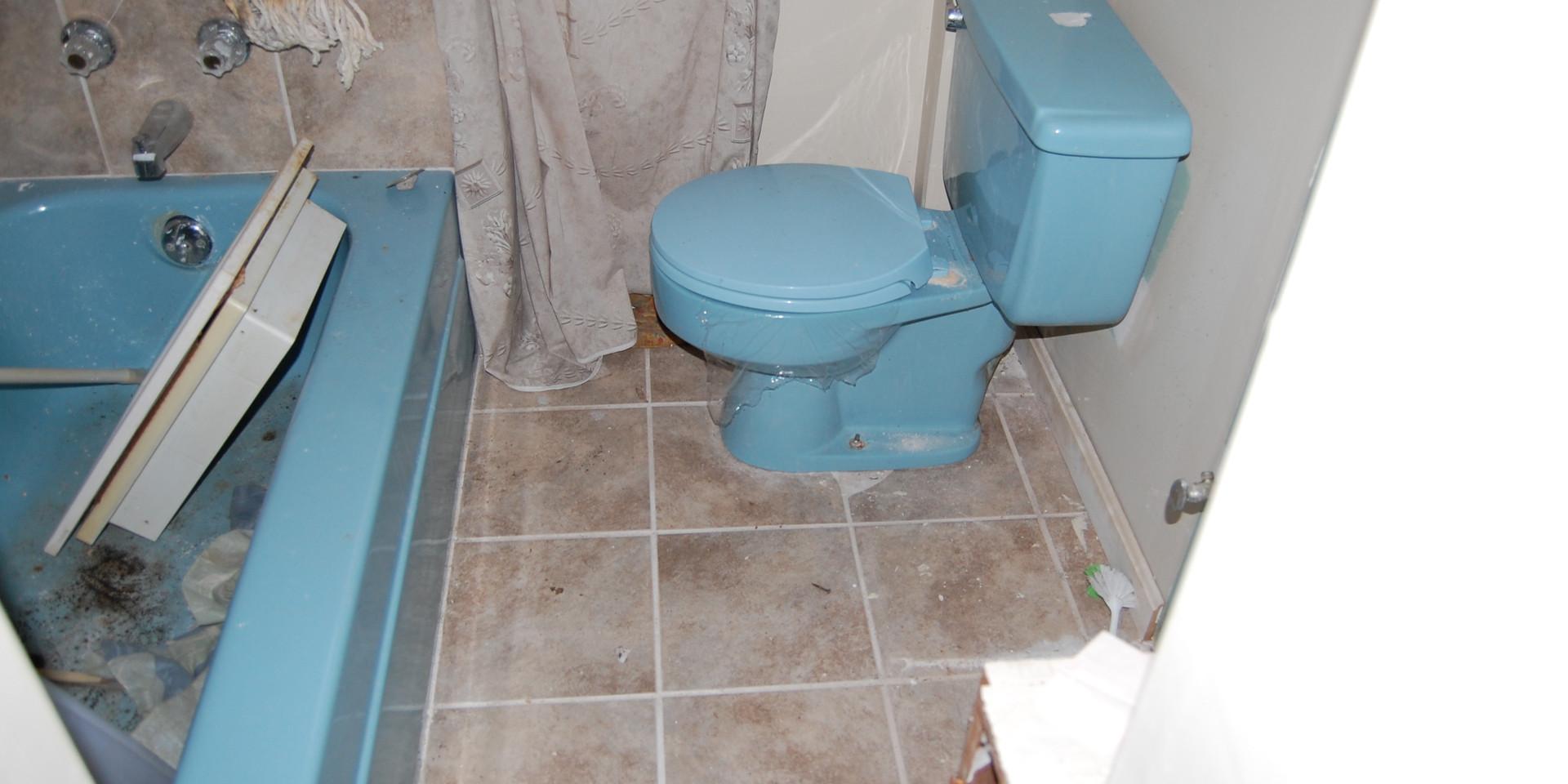 5.1 Main Level Bath.JPG