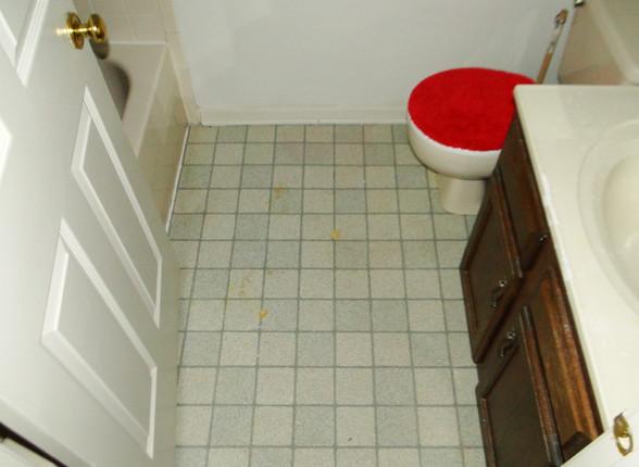12 - Guest Bath 1.JPG