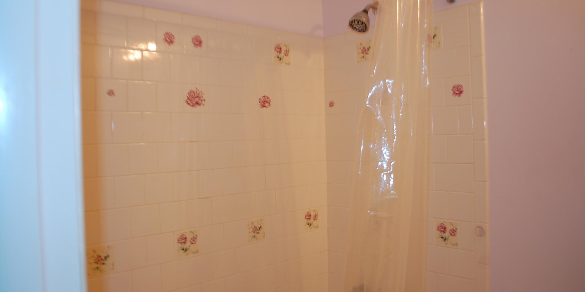 6.1 Guest Bath.JPG