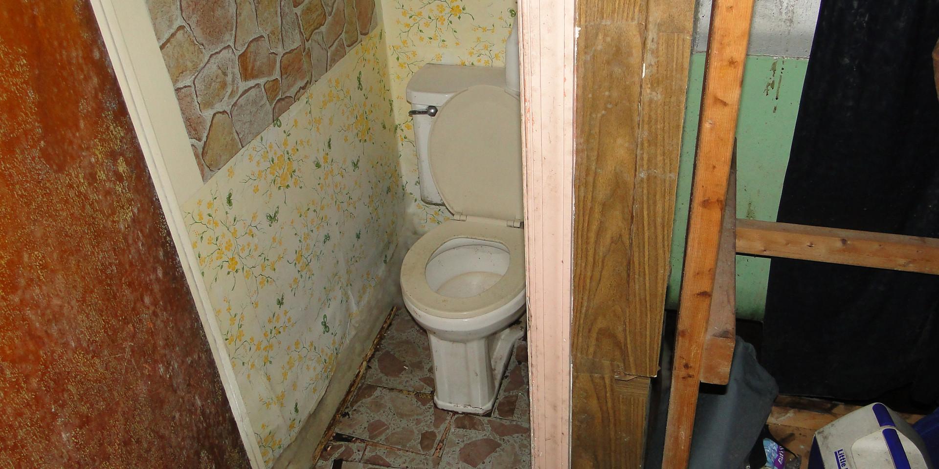 11 - Basement Bath.JPG