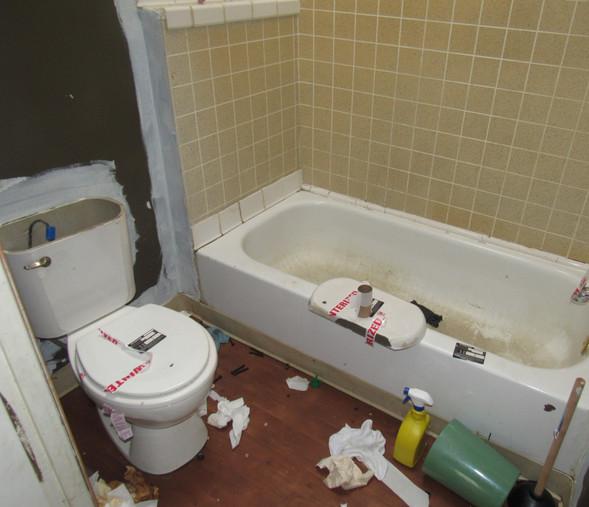 250 Bathroom.JPG