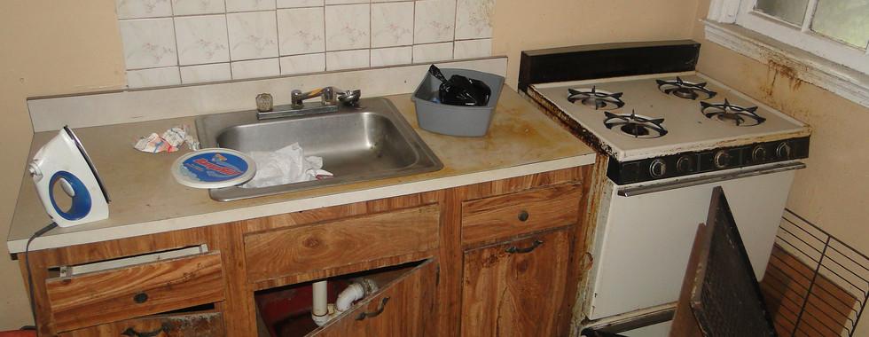 08 - Basement Kitchen 2.JPG