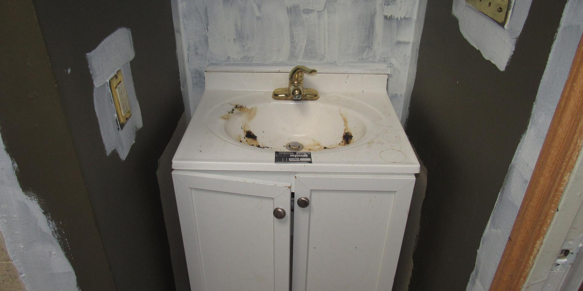 260 Bathroom.JPG