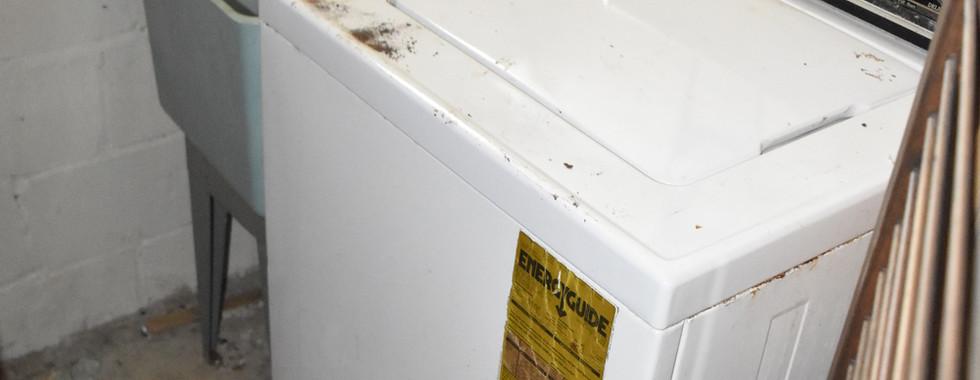 210 Basement_ Laundry.jpg