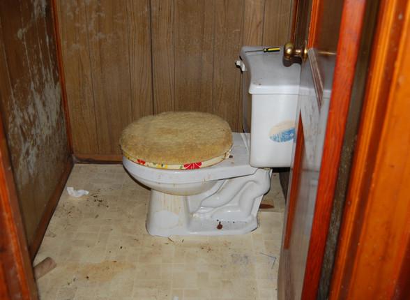 10.1 Basement Bath.JPG