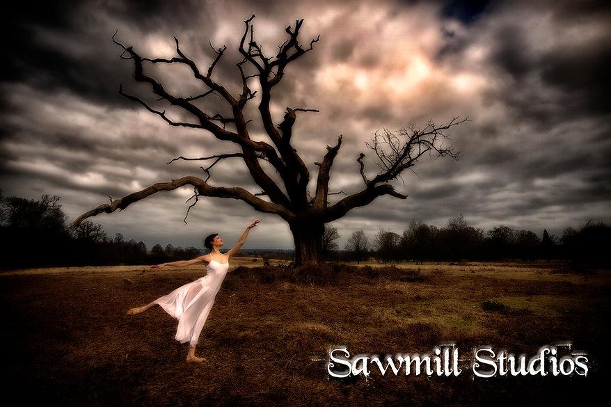 Sawmill Studios, Brasted