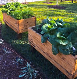 Double - 6 x 3 Culinary Beds