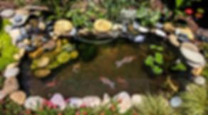 Koi Pond 2.png