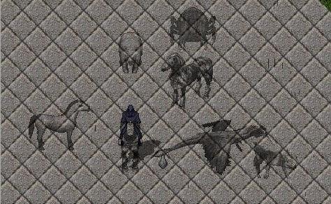 Shadow mounts.jpg