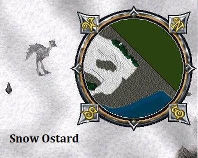 Snow Ostard.jpg
