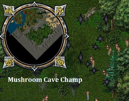 Mushroom Cave Champ.jpg