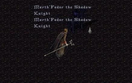 Shadow Knight.jpg