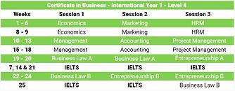 International Year 1 Description.png