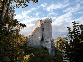 Les ruines normandes