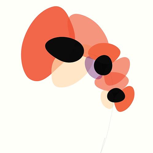 Peter Bainbridge: Orchid