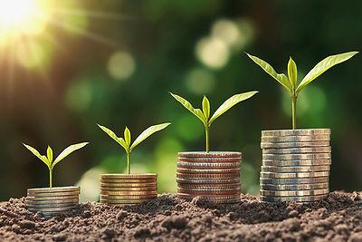 Sustainable Growth.jpg