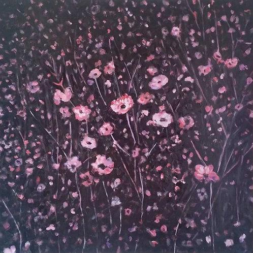 Sean mc Donnell: Flower Galaxies